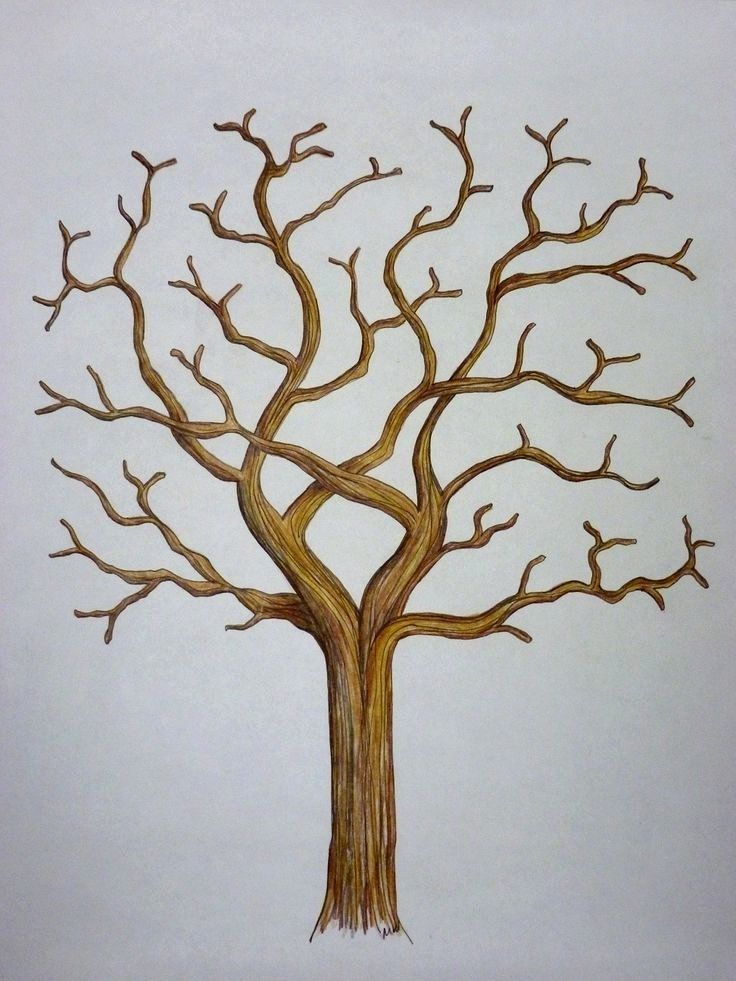 Template For Family Tree Unique 1000 Ideas About Family Tree Templates On Pinterest Family Tree Template Tree Templates Tree Painting