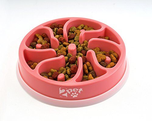 2PET Slowly Bowly, slow feed enjoyable playful dish. Prevent Bloating fun to use Dog Bowl. | Dog Supplies - Warning: Save up to 87% on Dog Supplies and Dog Accessories at Our Online Pet Supply Shop