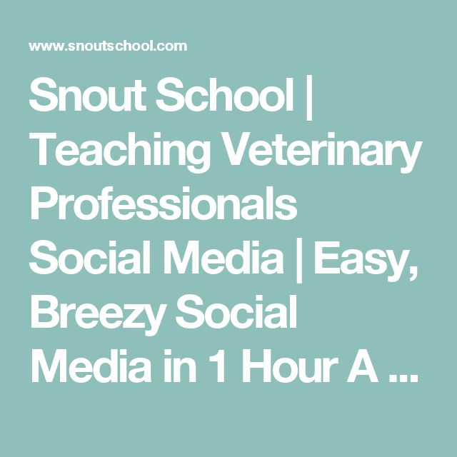 Snout School | Teaching Veterinary Professionals Social Media | Easy, Breezy Social Media in 1 Hour A Day: How Corpus Christi Animal Clinic Does It!