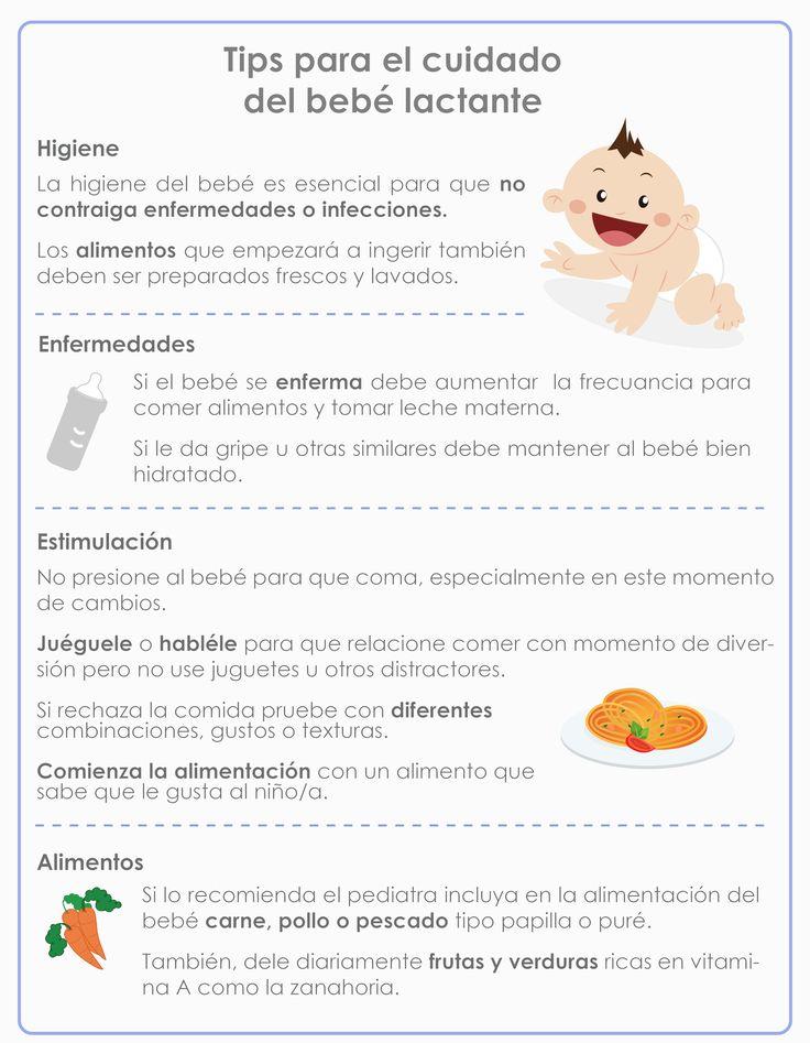 17 mejores ideas sobre alimentacion complementaria en pinterest recetas para lactancia - Alimentos para producir leche materna ...