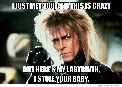 the-labyrinth-call-me-maybe: Memes, Best Movie, Songs, Funny Stuff, Things, David Bowie, Favorite Movie, The Labyrinths, Goblin King