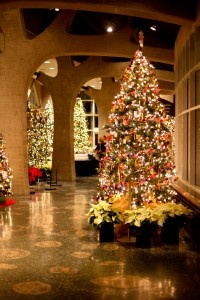 69 best Lighted Trees images on Pinterest | Lighted trees ...