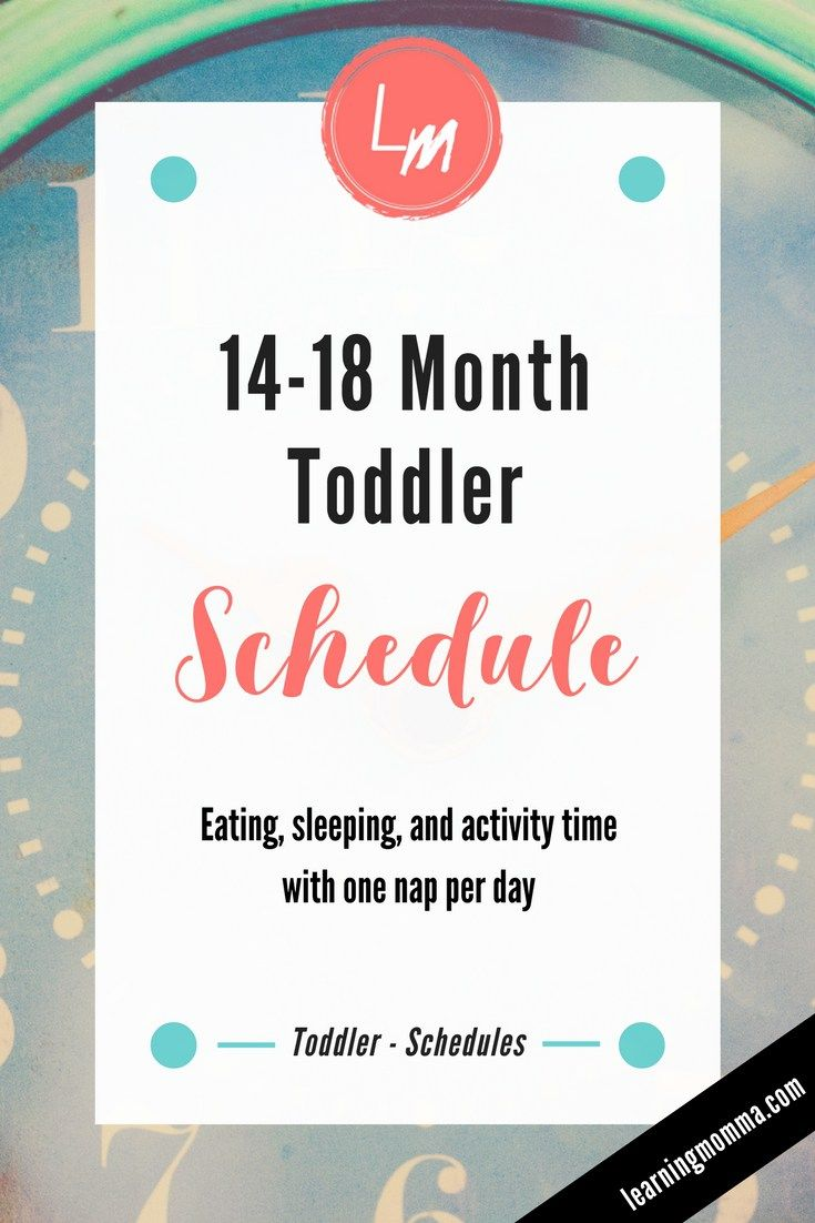 one nap toddler schedule - sample 1-2 year old routine | baby wall