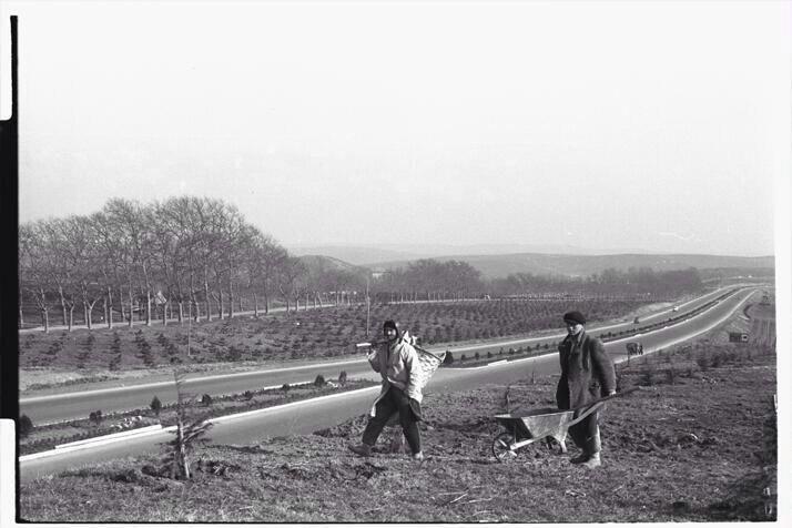 Plazaları olmayan Maslak (1950ler) #EskidenBuralar #istanbul #istanlook