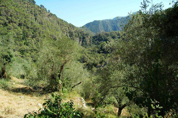 Fanghetto, Frazione di Olivetta San Michele (IM), Val Roia, dintorni