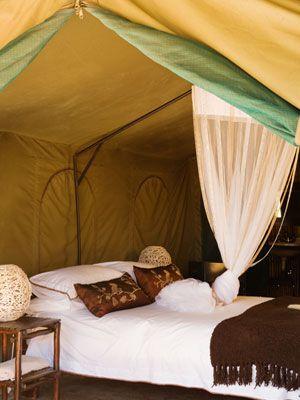 Elgin Hills - Tented Camp - Gallery