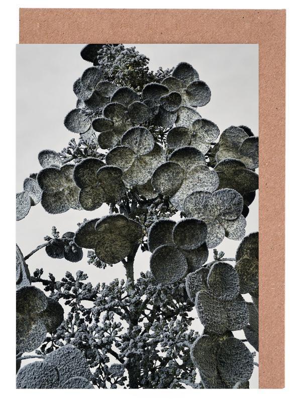 Staub Hortensie Grußkartenset Jetzt bestellen unter: https://moebel.ladendirekt.de/dekoration/accessoires/?uid=b32b5185-52f7-51c3-a467-24da787cfef4&utm_source=pinterest&utm_medium=pin&utm_campaign=boards #floral #accessoires #dekoration Bild Quelle: www.juniqe.de