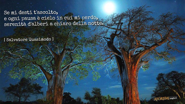 Se mi desti t'ascolto,   e ogni pausa è cielo in cui mi perdo,   serenità d'alberi a chiaro della notte.  Quasimodo [Tratta da: Acque e terre]