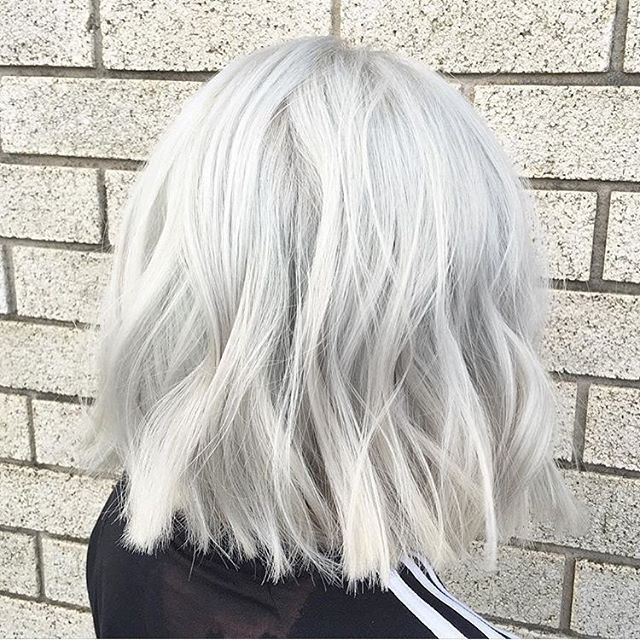 Best 25 Silver White Hair Ideas On Pinterest Grey White
