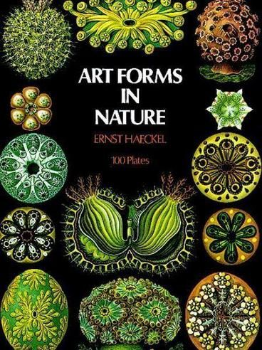 Art Forms in Nature by Ernst Haeckel. Multitude of strangely beautiful natural forms: Radiolaria, Foraminifera, Ciliata, diatoms, calcareous sponges, Siphonophora, star corals, starfishes, Protozoa, flagellates, brown seaweed, jellyfishes, sea-lilies, moss animals, sea-urchins, glass sponges, leptomedusae, horny corals, trunkfishes, true sea slugs, anthomedusae horseshoe crabs, sea-cucumbers, octopuses, bats, orchids, sea wasps, seahorse, a dragonfish, a frogfish, much more. All images…