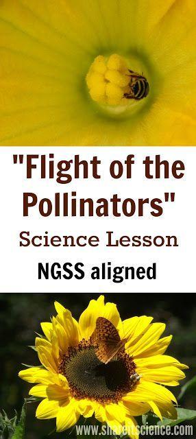 Aviation Flight Science | Academics | Western Michigan ...