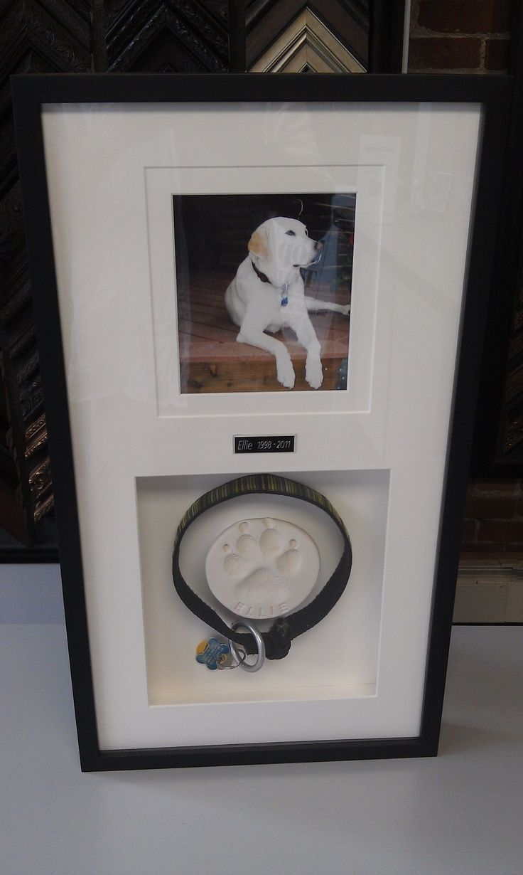 Take an impression of your dog or cat's paw; use their collar or favorite pet toy & mount it inside a frame with a picture of your beloved pet.