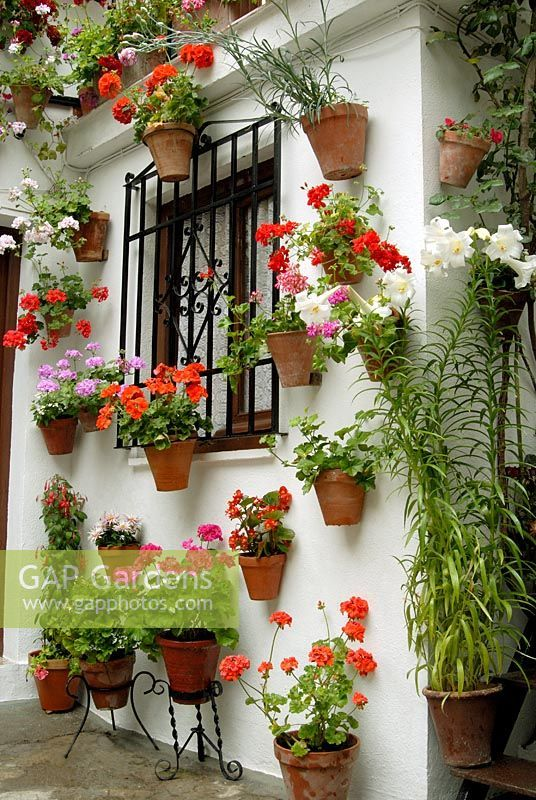 Spanish Patio Ideas   AOL Image Search Results