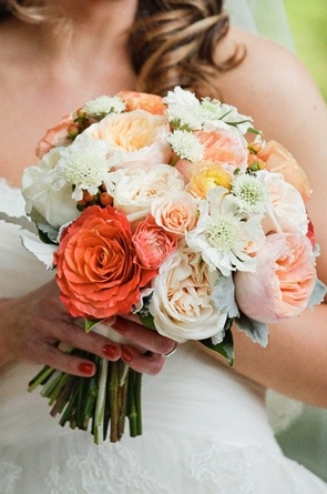 "The Bride will carry a textured clutch bouquet of coral-red ""Free spirit"" garden roses, peachy-pink ""Juliet"" garden roses, ivory ""Patience"" garden roses, ivory lisianthus with green buds, peach hypericum berries, peach spray roses and grey dusty miller wrapped in ivory ribbon in a loose, natural bow."