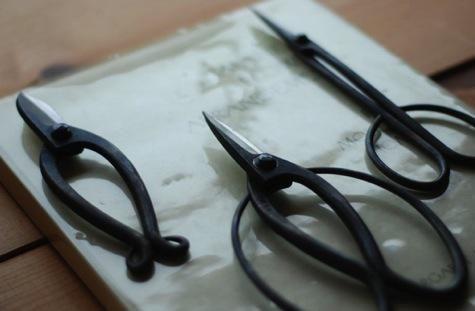 rather beautiful Japanese garden scissors
