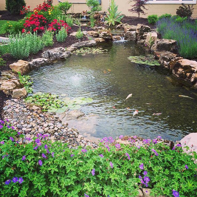 Koi Ponds And Gardens: 1000+ Ideas About Pond Aerator On Pinterest