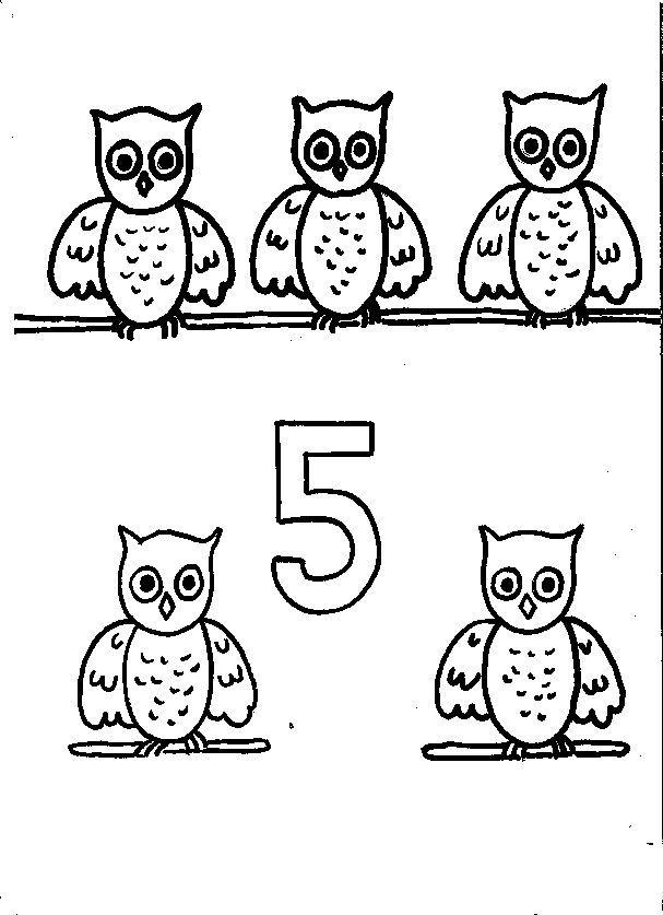 Animal Numbers Five Owl