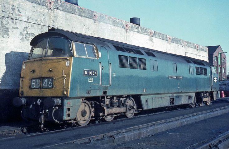 Railway Herald :: Imaging Centre :: D1064 at Gloucester Horton Road MPD