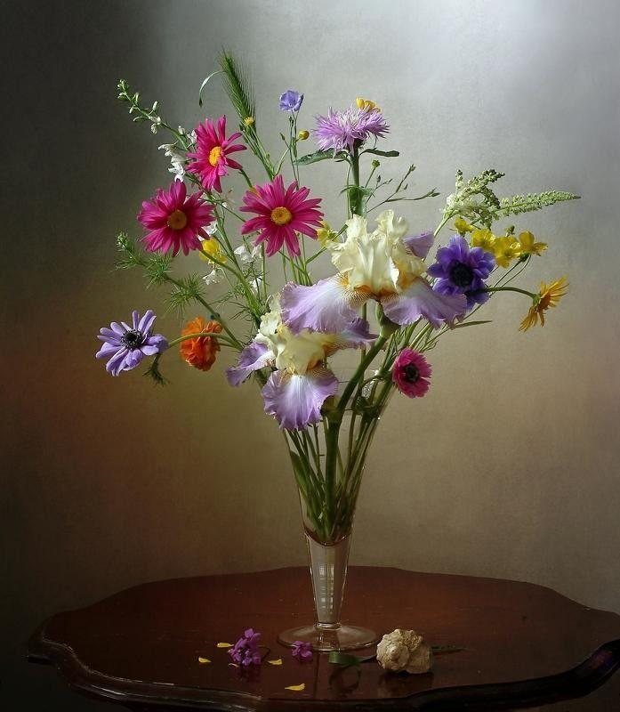художественное фото цветка сих пор
