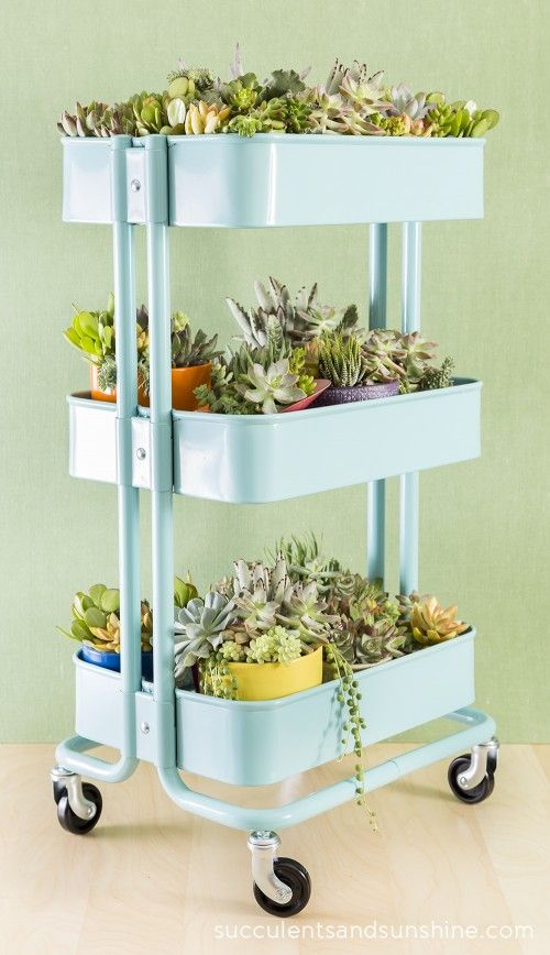 The Raskog is stylish, but still decidedly utilitarian, which makes it the perfect place to both pot and show off a collection of succulents. See more at Succulents and Sunshine » - HouseBeautiful.com
