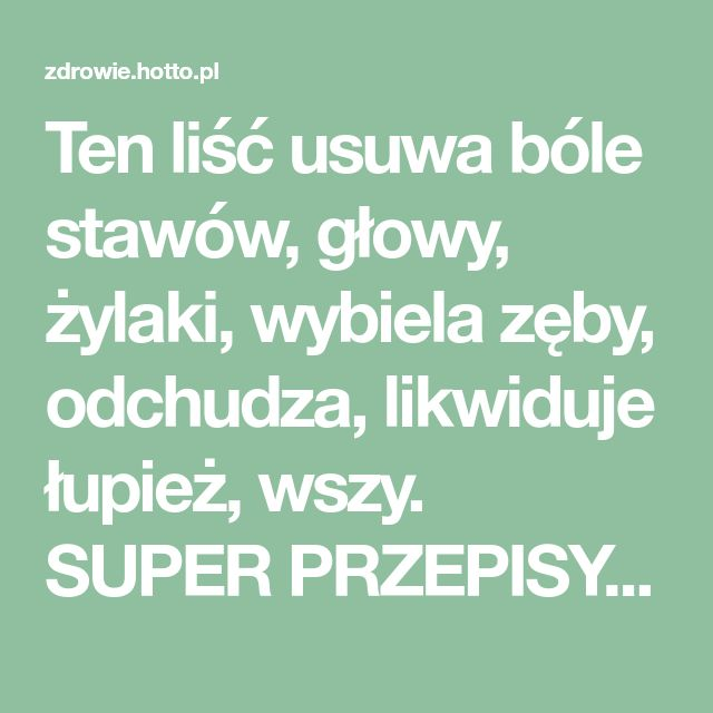 Ten liść usuwa bóle stawów, głowy, żylaki, wybiela zęby, odchudza, likwiduje łupież, wszy. SUPER PRZEPISY | zdrowie.hotto.pl, domowe sposoby popularne w necie