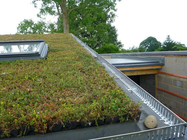 Sedum Green Roof Eco Beech Cottage Sedum Roof