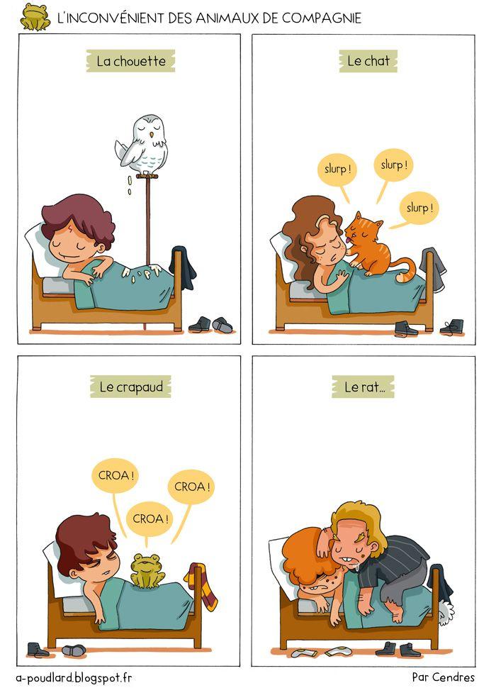 À Poudlard / At Hogwarts - Harry Potter Parody: L'inconvénient des animaux de compagnie / The down...