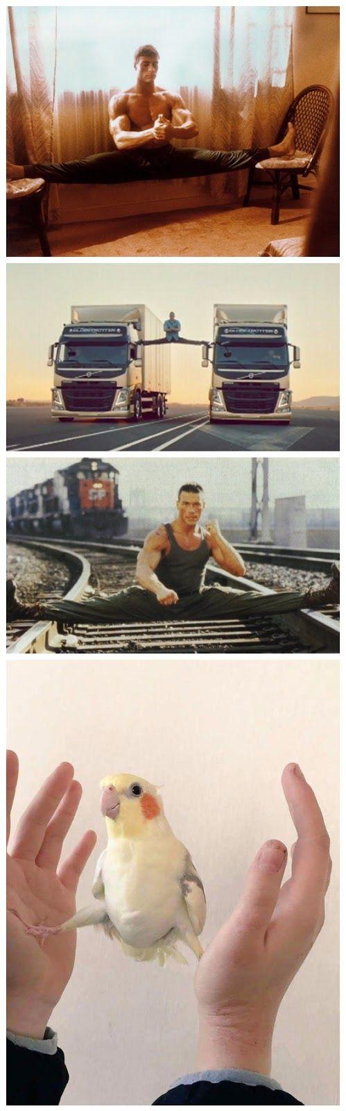 Funny Jean-Claude Van Damme Fan