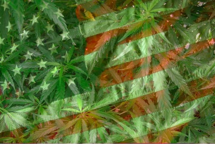 Take a look at key moments in the history of United States marijuana ...