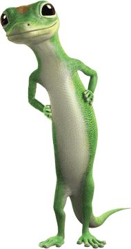 Geico Quote Auto Unique 30 Best Geico Images On Pinterest  Geckos Cry And Tv Ads