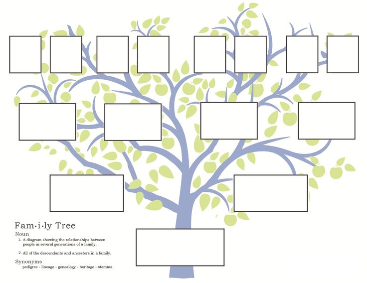 3 Generation Family Tree Template Blank Generations C11 Templates