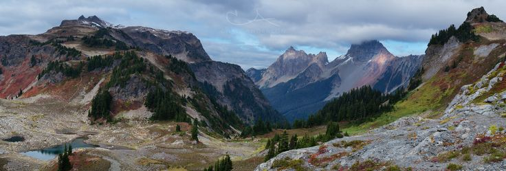 https://flic.kr/p/YPSLwM | Yellow Aster Butte | From a hike yesterday up to Yellow Aster Butte.  A little too cloudy to see Mt. Baker and Mt. Shuksan, but still a great day in the mountains.