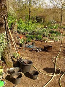 The Essence of Permaculture Gardening - good article to learn about Permaculture basics  permaculture - Definition [pur-muh-kuhl-cher]  (n.) System of cultivation intended to maintain permanent agriculture or horticulture by relying on renewable
