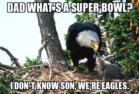 philadelphia eagles win super bowl joke | Philadelphia Eagles Super Bowl Memes