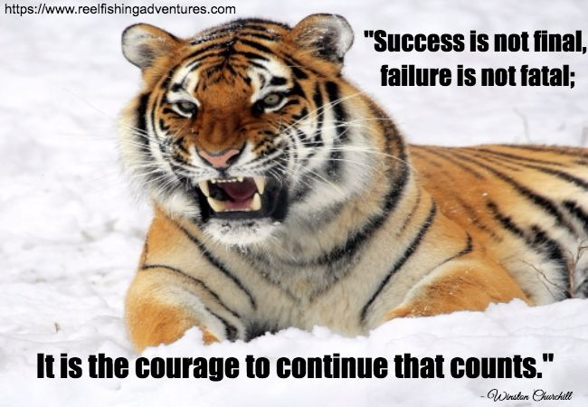 Courage Counts