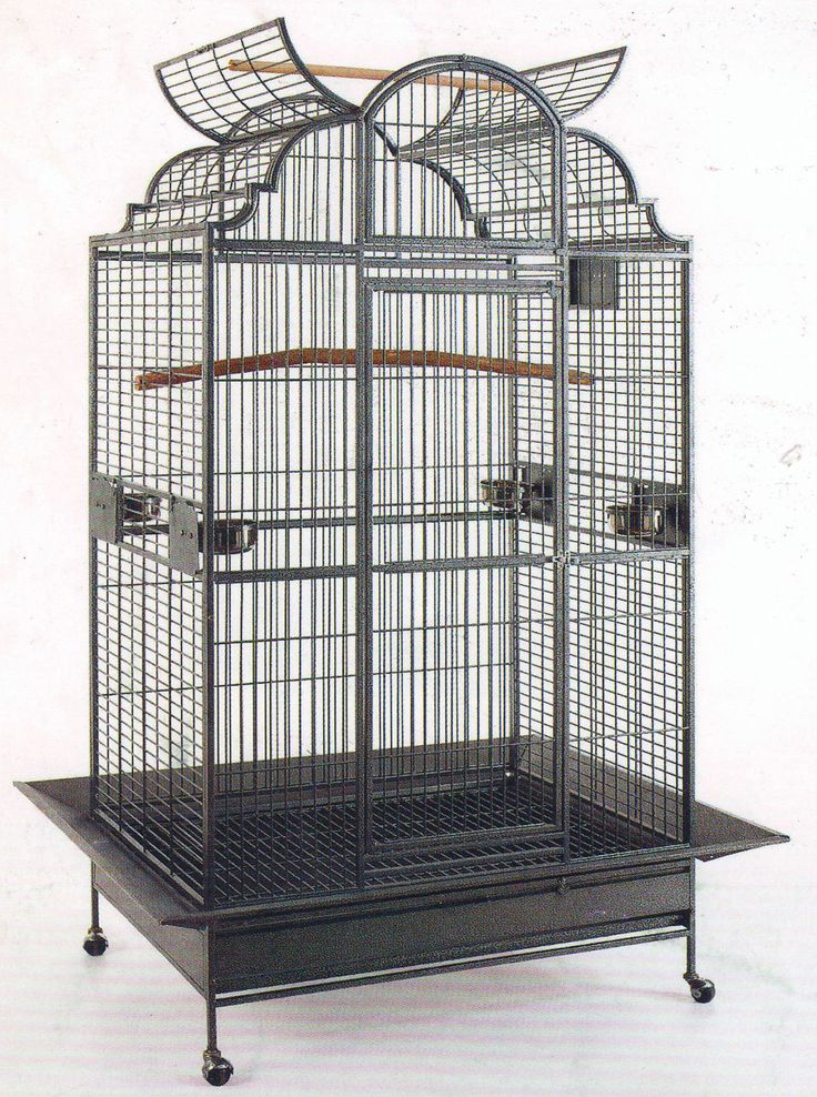 NEW Large Open Dome Play Top Parrot Macaw Amazon Bird Wrought Iron Cage 167