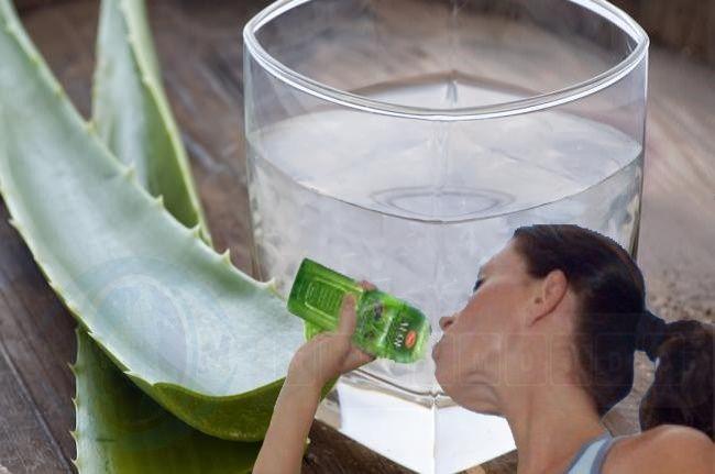 Bebida de aloe vera creada por investigadores - http://www.notimundo.com.mx/bebida-de-aloe-vera/