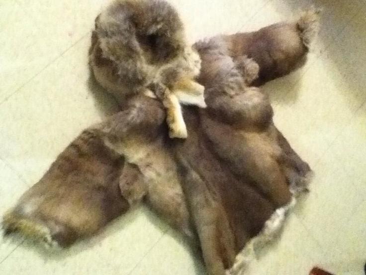 Inuit made kid's caribou parka by Elijah Takkiruq