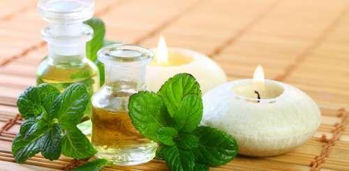 L'huile de menthe. Connaissez vous tous les bienfaits que peut vous apporter ce remède très simple ?