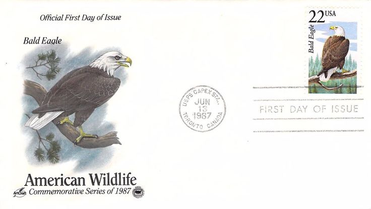 1987 Bald Eagle Hand Colored Art Craft First Day Cover