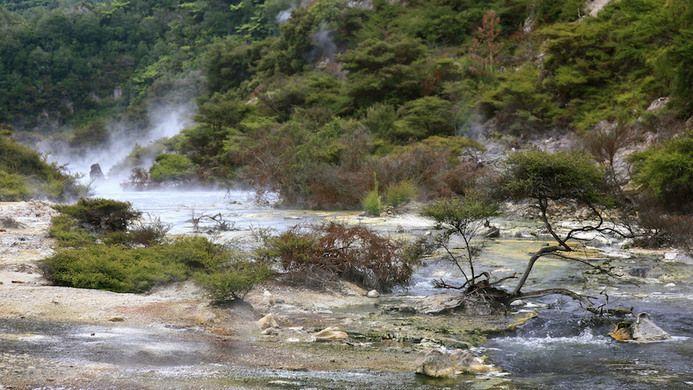 Frying Pan Lake – Waimangu, New Zealand - Atlas Obscura