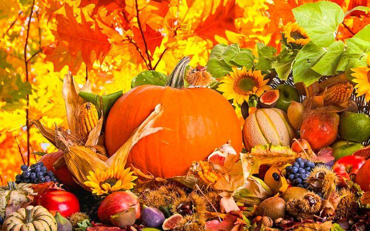Seasonal Offerings from Mist Gourmet Fresh Express | Hornblower Niagara Cruises