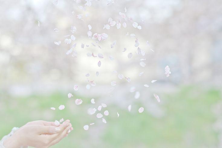 """Yukihiro Yoshida : drops arrangement """"whirlwind smile"""" http://digianalogue.com/photoblog/archives/2012/04/drops_arrangement_whirlwind_sm.php #osanpocamera #photography #YukihiroYoshida"""