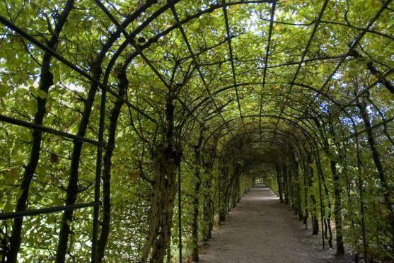 Garden Design Ideas by Life Garden Designs