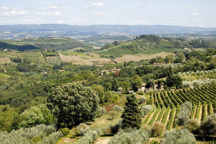 Zamknij oczy i pomyśl o Toskanii...co widzisz? Niech zgadnę na pierwszym planie złociste wzgórza usiane rolkami sprasowanej słomy, wąską drogę wzdłuż której rosną wysokie i zielone cyprysy, która prowadzi do kamiennego domu z zielonymi okiennicami, oraz ogrodem pełnym pachnących ziół
