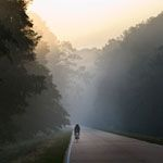 The Natchez Trace Parkway is a 444-mile drive through exceptional scenery and 10,000 years of North American history.