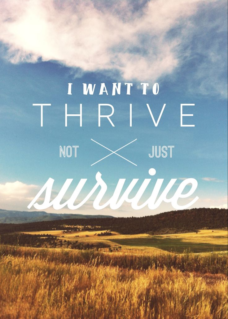 I want to thrive, not just survive. Switchfoot