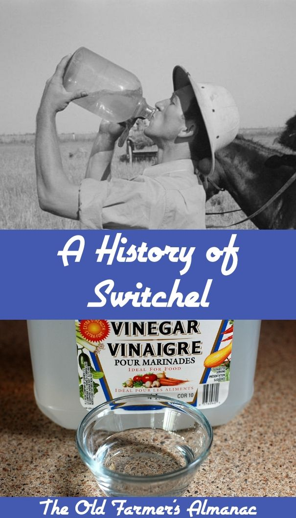 A History of Switchel