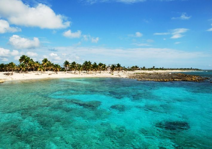 Best Rated Shore Excursions & Cruise Excursions in Costa Maya, Mexico