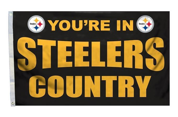 Pittsburgh Steelers Flag 3x5 Country Z157-2324594113